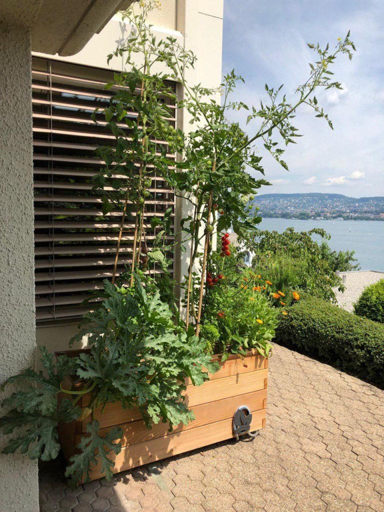 Hochbeet-Plus auf einer Terrasse am Zürichsee